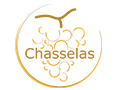 Chasselas - Swiss Wine
